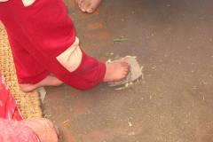 Als Abschluss seiner Puja tritt Biraj auf ein vorbereitetes Arrangement