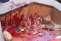 Erster Haarschnitt - Chudakarana - blutbespritzter Altar
