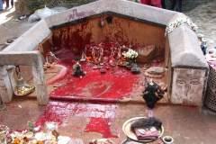Erster Haarschnitt - Chudakarana - Altar nach vorllendetem Ritual