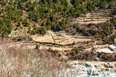 Himalaya-Gokyo-Reisfelder-Im-Gebirge