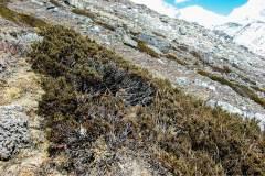 Himalaya-Kalapatar-Raeucherwerk-Im-Gebirge