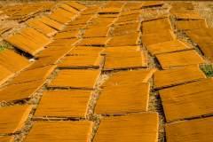 Herstellung tibetischer Räucherstäbchen - Trocknen der Stäbchen